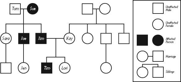 6th - malkowski  l   ela    vocabulary heredity iii